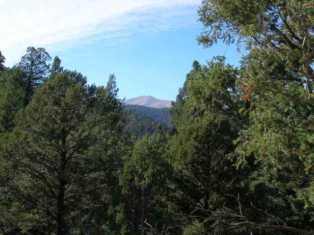 Twin Mountain Cabin in Upper Canyon Ruidoso