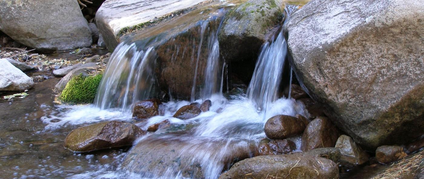 Creek near Twin Mountain Cabin in Upper Canyon Ruidoso