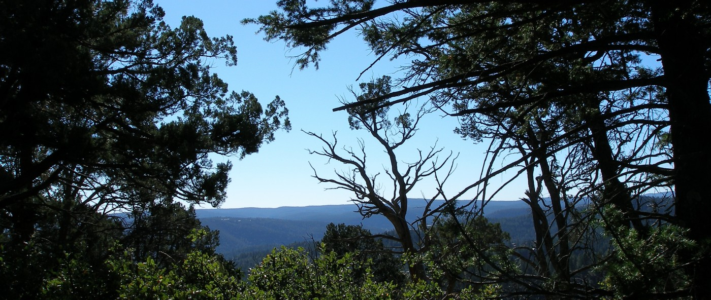 View from Twin Mountain Cabin in Upper Canyon Ruidoso