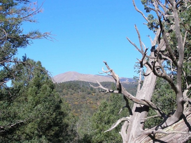 View of Sierra Blanca from Twin Mountain Cabin, Upper Canyon Ruidoso