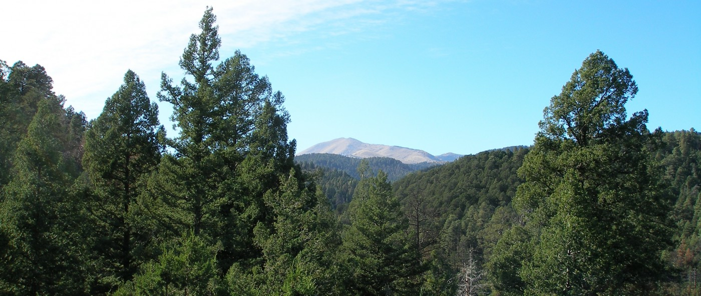 View of Sierra Blanca from Twin Mountain Cabin in Upper Canyon Ruidoso