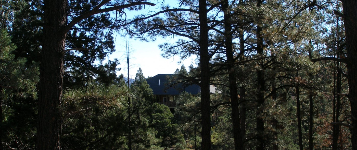 Twin Mountain Cabin in Upper Canyon Ruidoso