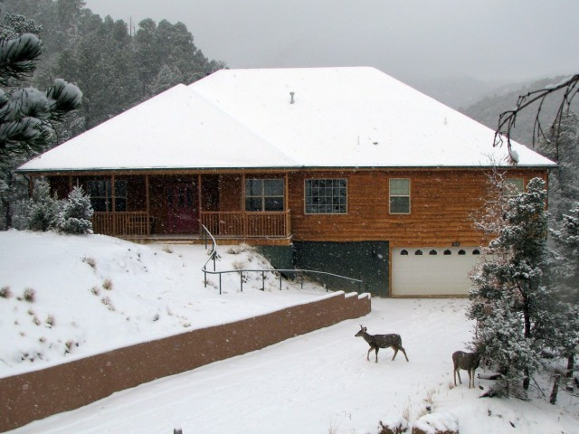 Twin Mountain in winter, with deer and snow